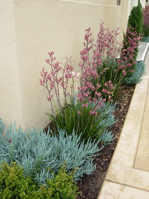 Rhs Advice How To Get The Most Out Of Your Narrow Borders besides Planning A Garden Style And Design additionally Re mendations moreover Index moreover Long Gardens. on garden design ideas for long narrow gardens